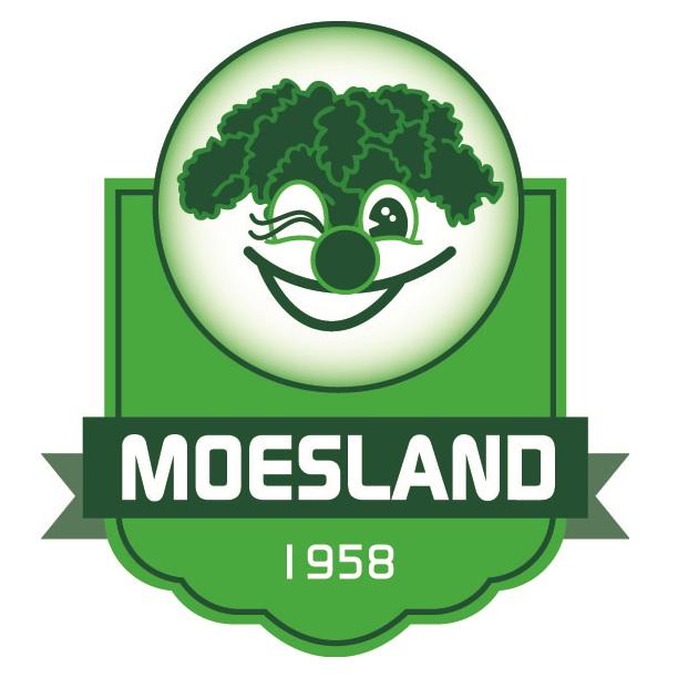 Logo Stichting Carnaval de Moeslanden 2016